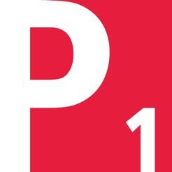 Drupal Saml Single Sign On SSO PingOne