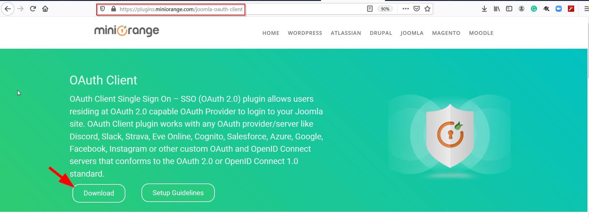 oauth provider the zip for Joomla
